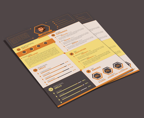 flat-resume-template-design-for-developers-1
