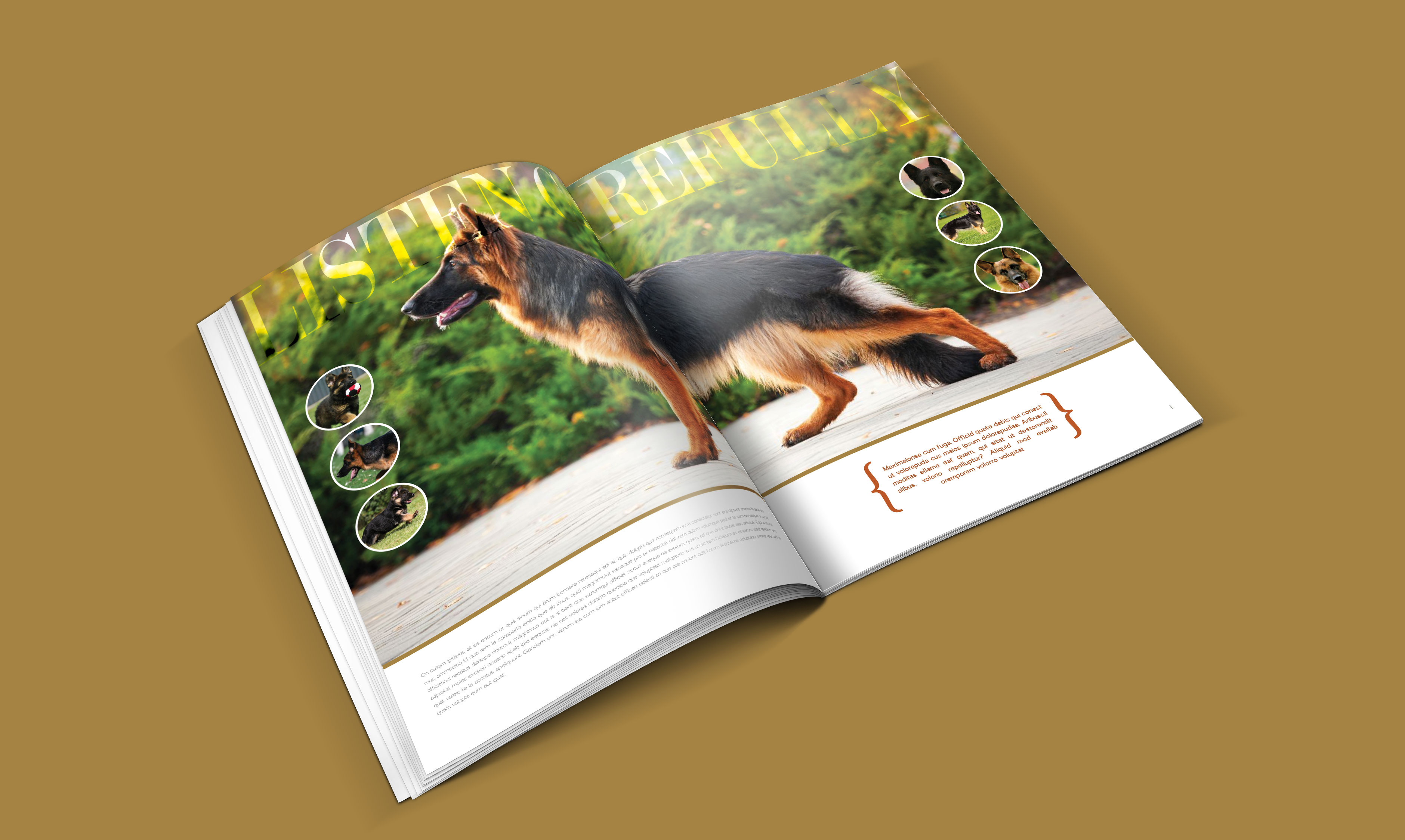 dogs-catalogue-design-template-in-ai-indd-pdf-format-1