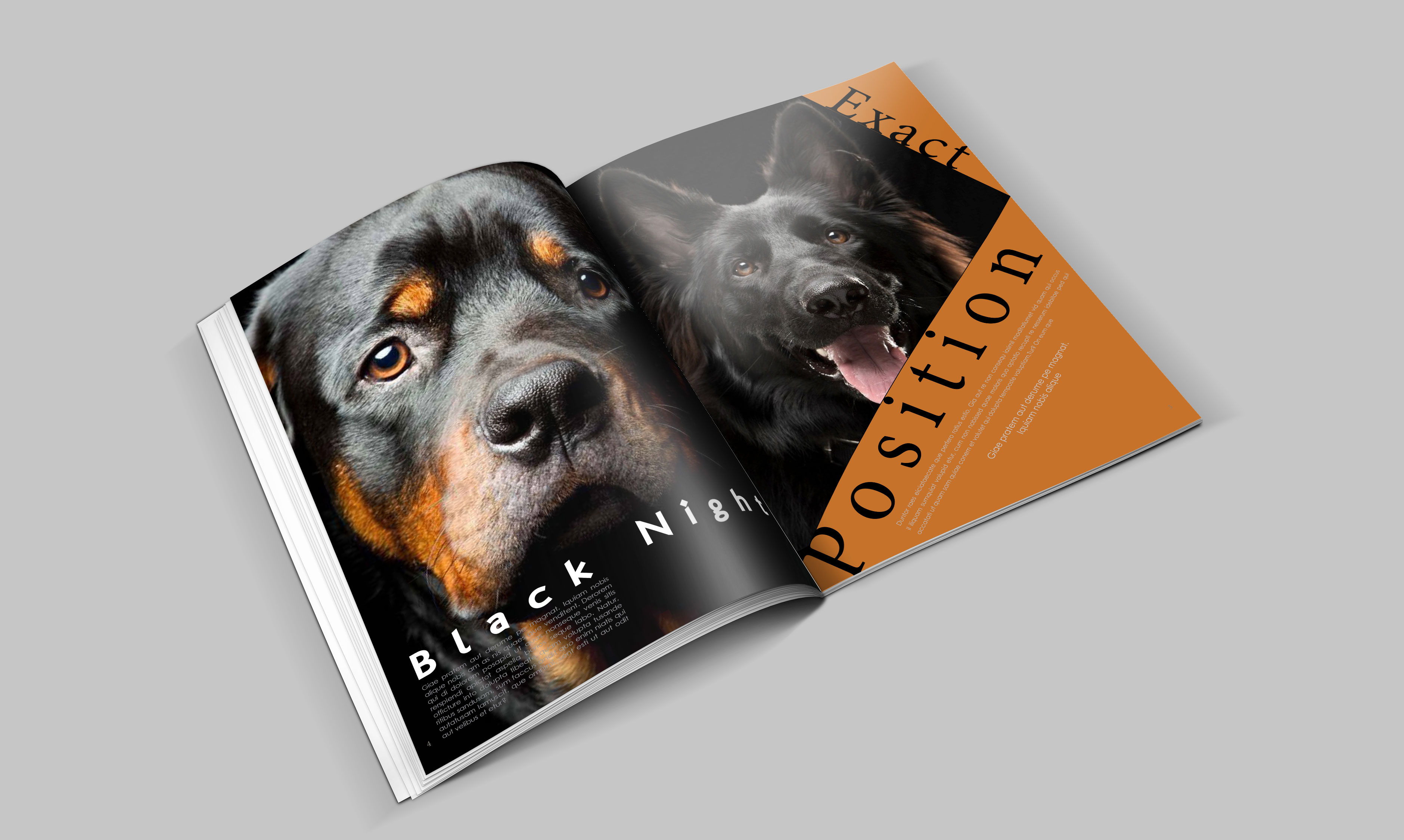 dogs-catalogue-design-template-in-ai-indd-pdf-format-2