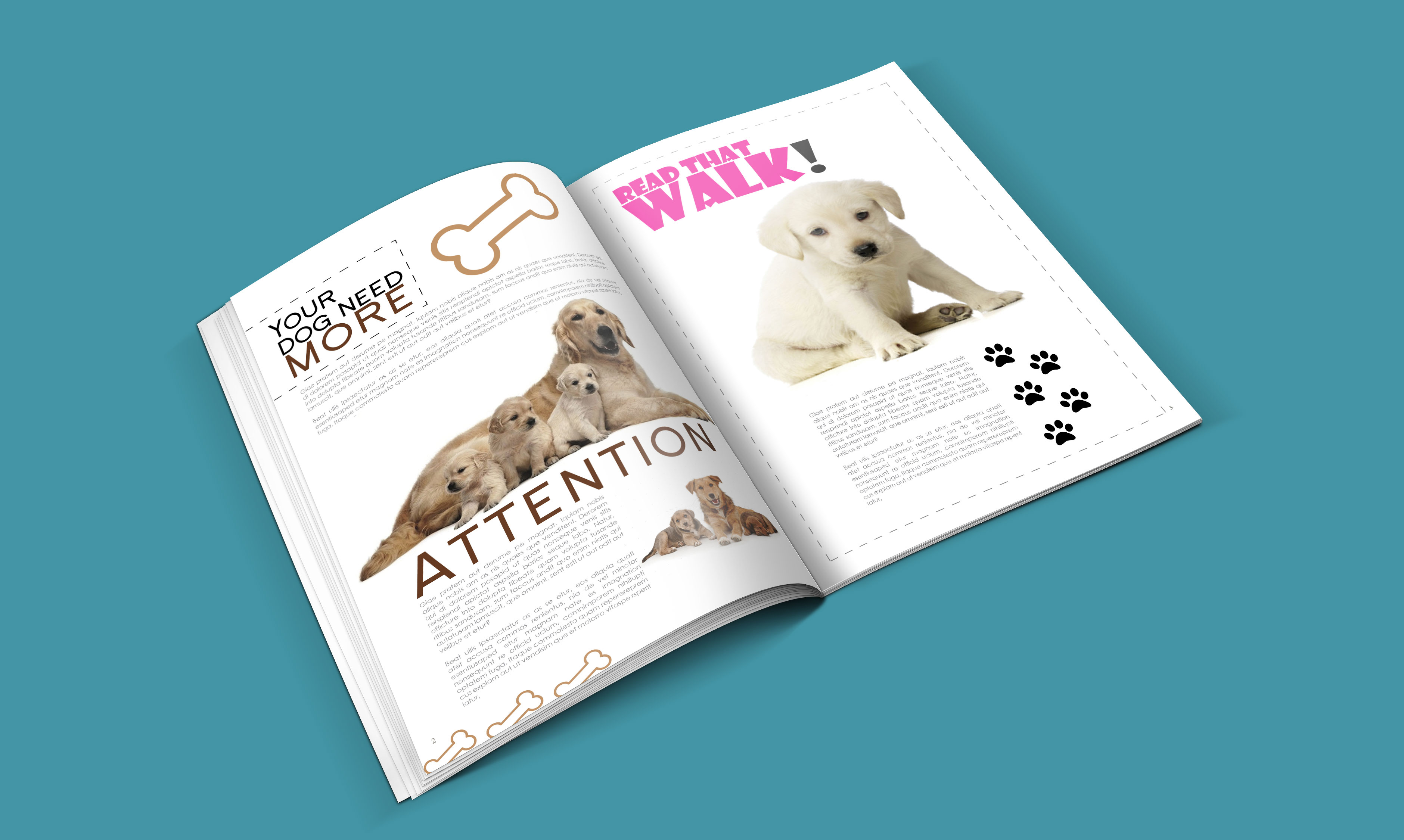 dogs-catalogue-design-template-in-ai-indd-pdf-format-3