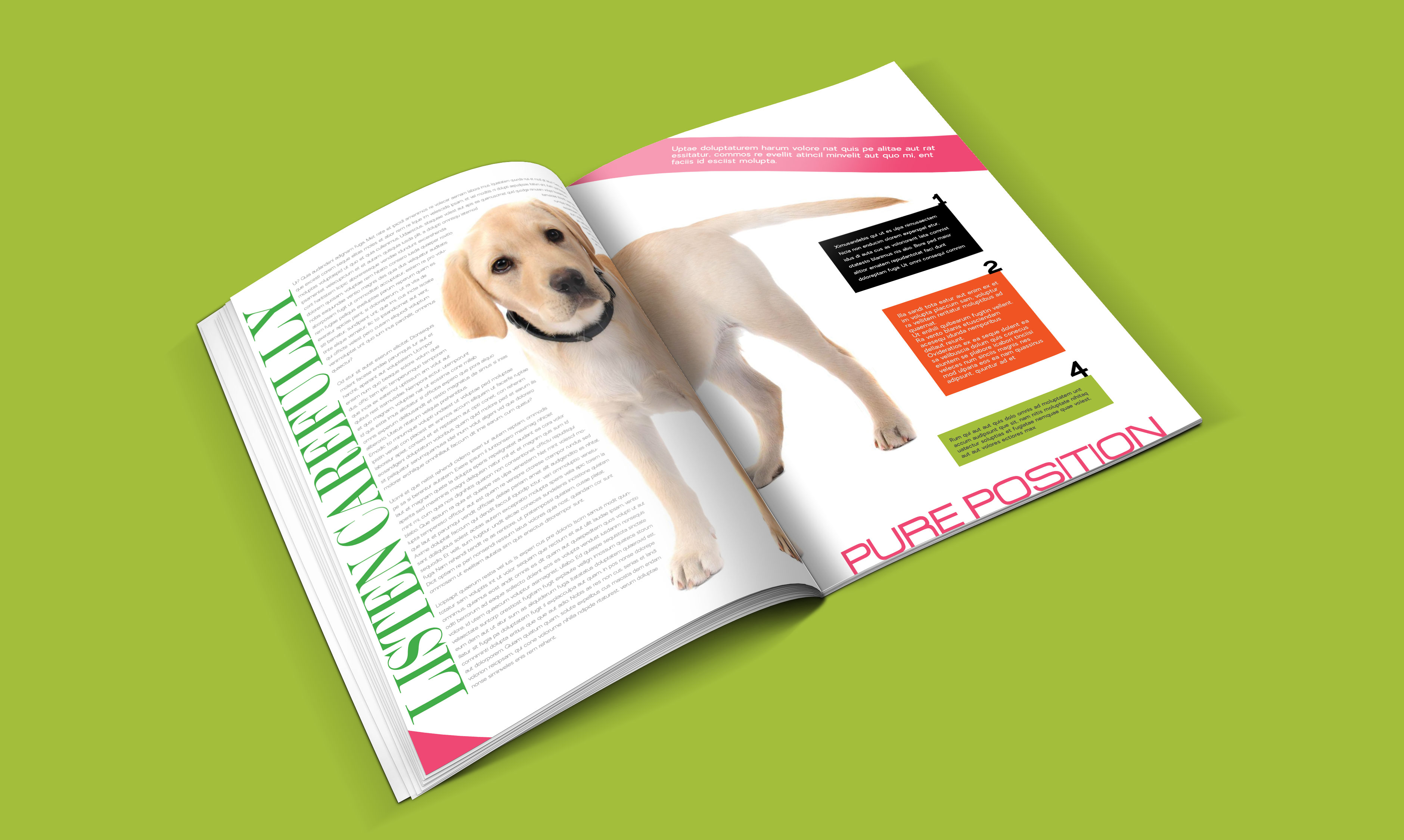 dogs-catalogue-design-template-in-ai-indd-pdf-format-5