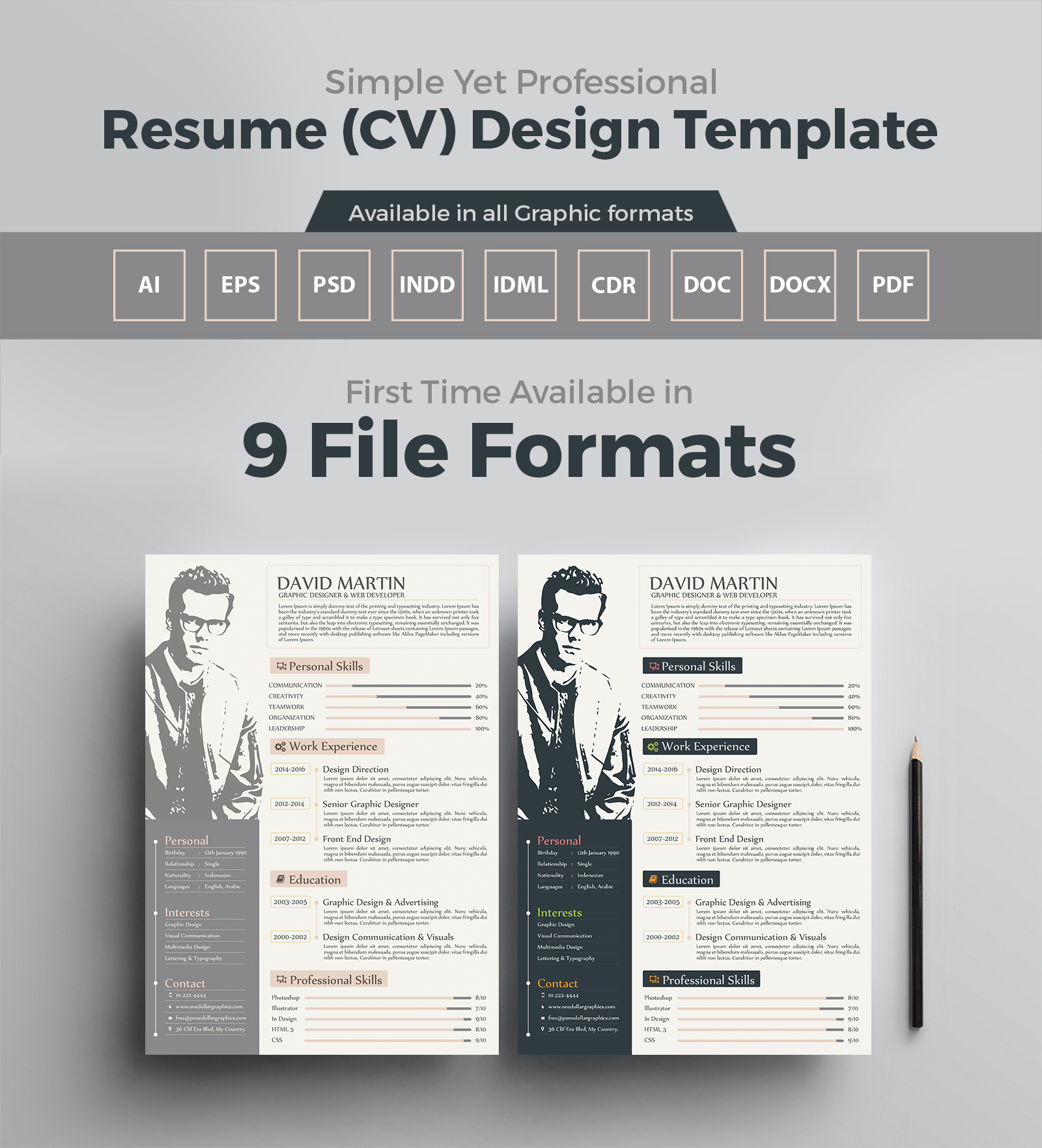 Simple Yet Frofessional Resume-CV Design Templates