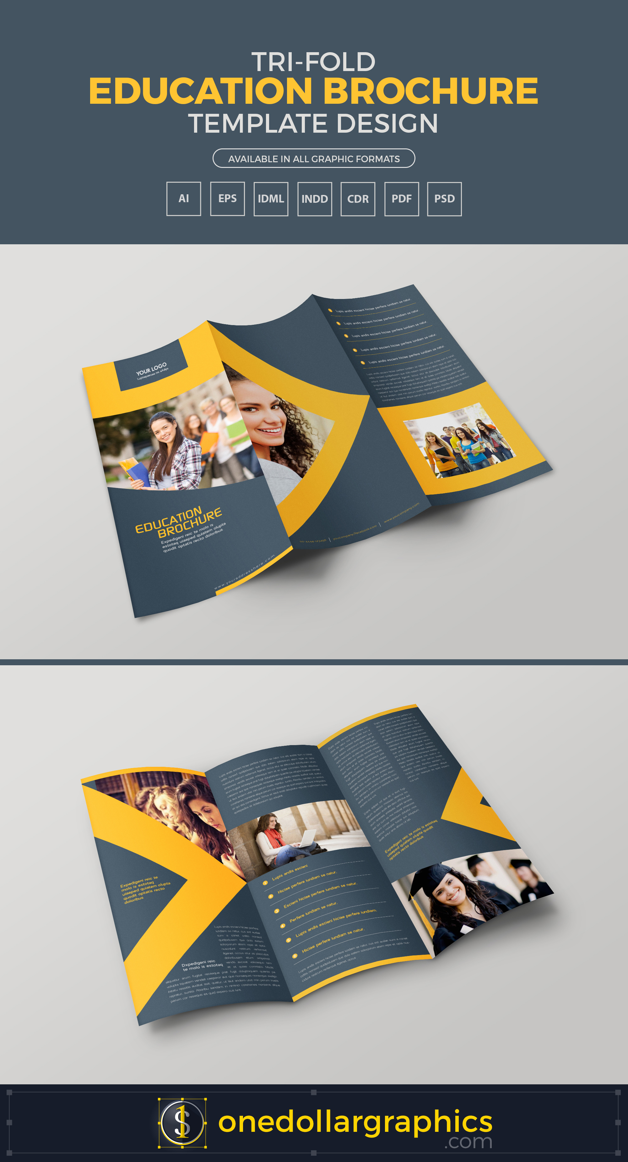 Tri fold education brochure template design in ai eps for Tri fold school brochure template
