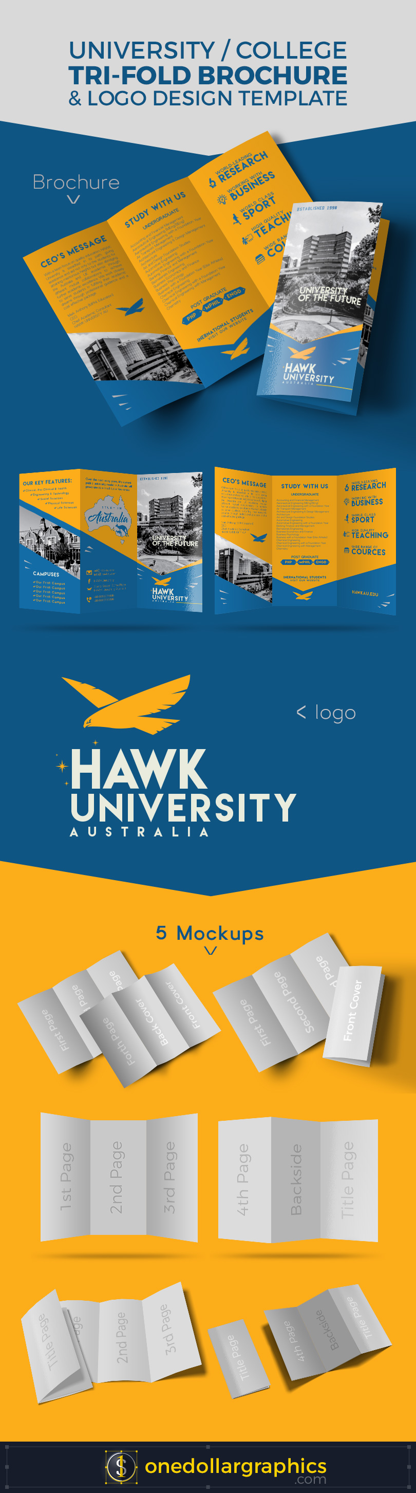 College-University-Tri-Fold-Brochure-Design-&-Logo-Template